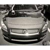 Rockhard Bedliners - Polyurea Material Available at SprayEZ - Spray-on Bedliner Car Hood